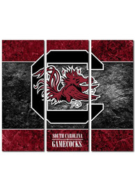 South Carolina Gamecocks 3 Piece Border Canvas Wall Art