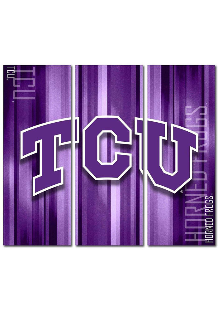 TCU Horned Frogs 3 Piece Rush Canvas Wall Art - Image 1