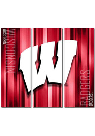 Wisconsin Badgers 3 Piece Rush Canvas Wall Art
