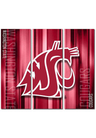 Washington State Cougars 3 Piece Rush Canvas Wall Art