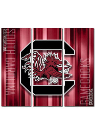 South Carolina Gamecocks 3 Piece Rush Canvas Wall Art