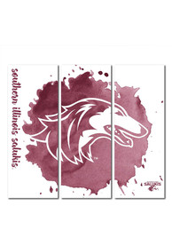 Southern Illinois Salukis 3 Piece Watercolor Canvas Wall Art