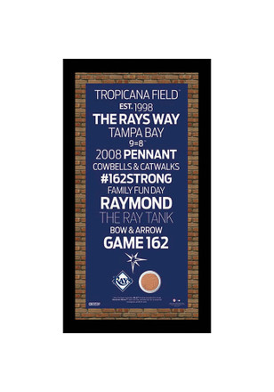 Tampa Bay Rays 9.5x19 Framed Posters