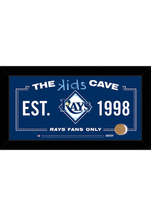 Tampa Bay Rays 10x20 Framed Posters