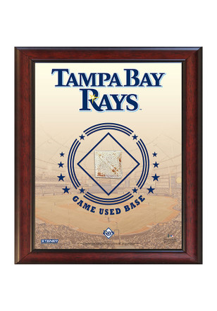 Tampa Bay Rays 11x14 Framed Posters